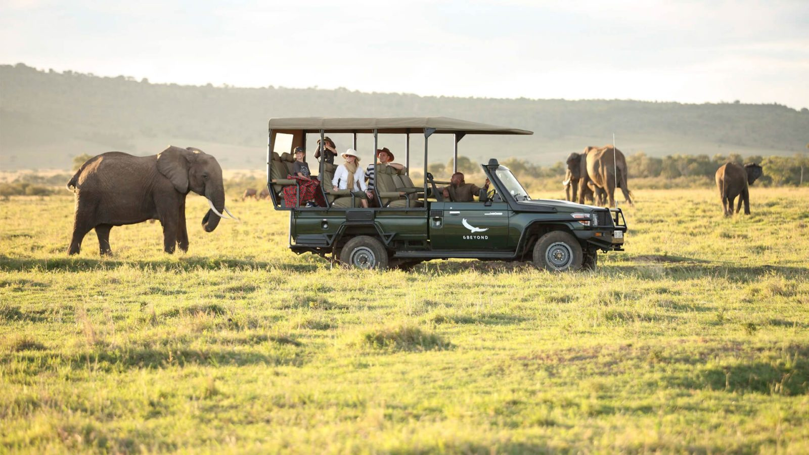 elephants-on-a-game-drive-in-the-masai-mara-1600x900